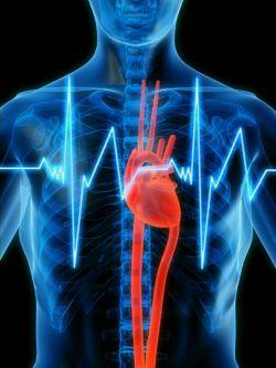 نشانه هایی از سکته قلبی چند ماه زودتر به دلیل افزایش هورمون كورتیزول درخون: ریزش زیاد و غیرطبیعى مو تمایل زیاد به خوردن مواد قندی و چربی سردردهاى شدید ناگهانى كاهش حافظه