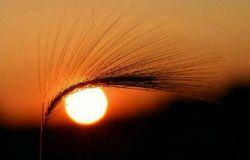 و خورشید در قرارگاه خود در حرکت است_ یاسین ۳۸