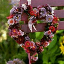 سلام گل های زندگی
