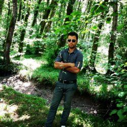 یه روز خوب تو جنگلهایه شمال کشور.