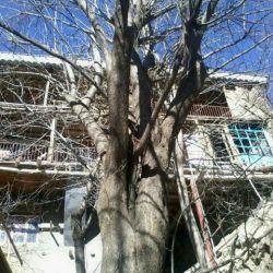 روستای کنگ  استان خراسان زمستان 94