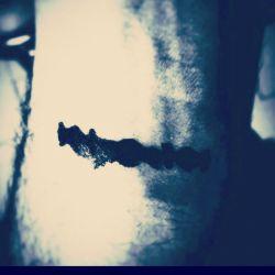 همیشه از موسیقی می ترسیدم، چون نمی دانستم می خواهد مرا به چه دنیایی ببرد ... (کافکا)