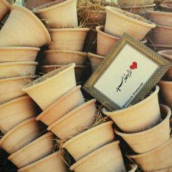 ♥ را به خدا بسپار: تنم ، خاكیست اى بذر مهر! به خالى قلبم بنشین تا به بركت شمیم گلهاى یادت گلدانى باشم كه حضور بهاریت را تجلى مى دهد ،  حتى در زمستان ... #rastakhiz