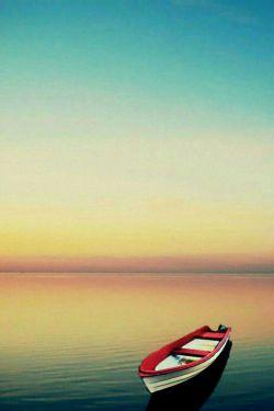 با#چوب_پوسیده نمی شود،  #قایق_و_کشتی ساخت... همانطور که با #افکار_پوسیده نمی توان #خوشبخت شد...