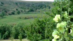 طبیعت ایردموسی مرکز بخش سبلان شهرستان سرعین امروز چهارم تیر 95 - telegram.me/irdemousa