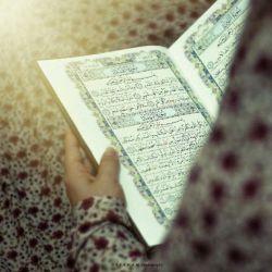 شب قدر شب بیدار شدن هست نه بیدار ماندن ، دعا کنید بیدارشویم...التماس دعا