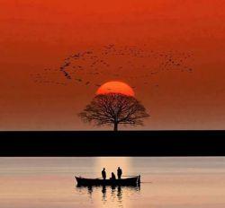 رنج نباید تو را غمگین كند, این همان جایی ست كه اغلب مردم اشتباه میكنند... رنج قرار است تو را هوشیار تر كند, چون انسانها زمانی هوشیارتر میشوند كه زخمی شوند، رنج نباید بیچارگی را بیشتر كند.  رنجت را تنها تحمل نكن, رنجت را درک كن, این فرصتی ست براى بیداری, وقتی آگاه شوی بیچارگی ات تمام میشود...  اگر كه به جاى محبتی كه به كسی كردید از او بی مهری دیده اید, مأیوس نشوید, چون برگشت آن محبت را از شخص دیگری, در زمان دیگری, در رابطه با موضوع دیگری خواهید گرفت. شک نكنید! این قانون كائنات است.
