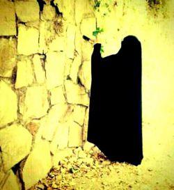 دختر چادری باید:چادرش سلاحش دربرابر دشمنانش باشه........... دختر چادری باید:چادرش صدف مروارید وجودش باشه............... دختر چادری باید:با چادرش مدافع حریم عشق باشه....................