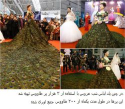 لباس های عروس عجیب