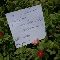 22 ساله شدنم مبارک باشه :)))))))
