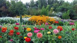 اصفهان - باغ گلها