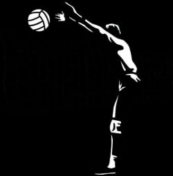 ✶volleyball✶