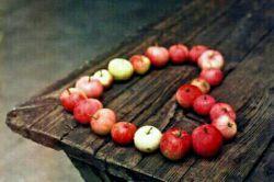 خوشا به حال زلیخا...          عاشق که شد                خدا را پیدا کرد  ما که عاشق می شویم               خدا را گم می کنیم