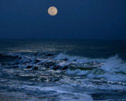 با ماه میگویم همه تنهاییم را  با موج می گویم غم دریاییم را وقتی که شب در پنجه های غم اسیر است  با باد می گوییم پیام خاکــــــــــیم را
