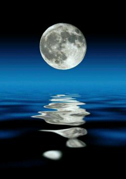 شب قشنگترین اتفاقی ست که تکرار میشود تا آسمان زیباییش رابه رخ زمین بکشد شب های زندگیتون قشنگ و آروم