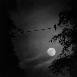 Contigo Aprendí, A Ver La Luz Del Otro Lado De La Luna