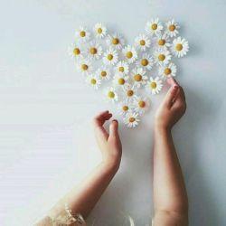 مهربانیت را به دستی ببخش ؛ که می دانی با او خواهی ماند ....  وگرنه حسرتی می گذاری بر دلی که دوستت دارد ... !!!