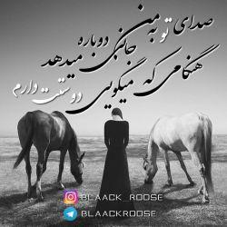 صدای تو به من جانی دوباره میدهد هنگامی که میگویی دوستت دارم... #blaack__roose #blaackroose#blackrose#رز_سیاه#بلک_رز