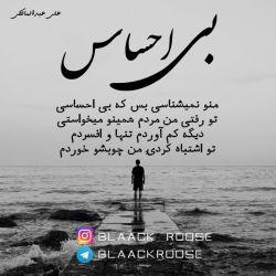 بی احساس شعر آهنگ علی عبدالمالکی #blaack__roose  #blaackroose #blackrose #رز_سیاه #بلک_رز