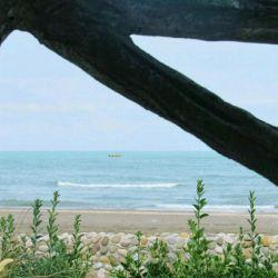 در معرکهٔ عشق،        دلیرانه متازید /  بر صفحهٔ دریا       نتوان مشق شنا کرد...  صائب تبریزی ، #عکس_از_زائر_ظهور