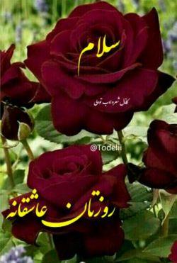 سلام دوستان.اولین روز هفته  شما بخیر.موفق  و شادمان باشید