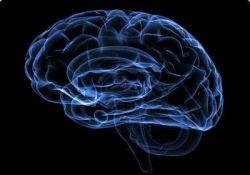 """بر اساس نتایج یک پژوهش تازه: """"اعتقاد به خدا فعالیت مناطق مغزی مربوط به تفکر تحلیلی را سرکوب میکند """" !  http://journals.plos.org/plosone/article?id=10.1371/journal.pone.0149989"""
