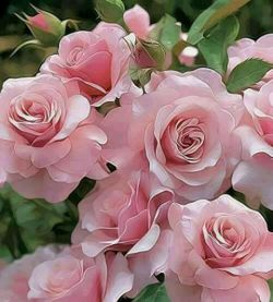 جمعه تون به خیروشادى الهى قرار دلهاى بیقرارماباش فراوانى را در زندگیمان جاری و جودمان را لبریز آرامش ثروتمان را فزونی و قلبهایمان را پراز عشق کن. سلام
