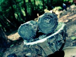جنگل سبز جاده هراز ذغال قلیون بچه ها