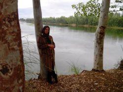 شمال نزدیک بندر امیرآباد