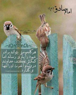 امام صادق (علیه اسلام): هرگاه #مومنی بتواند برادر خودرا #یاری رساند اما #کمکش نکند ، #خداوند در #دنیا و #آخرت او را #تنها می گذارد