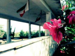 بوستان شهدا  امروز