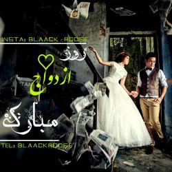 روز ازدواج مبارک...  #blaack__roose  #blaackroose #blackrose #رز_سیاه #بلک_رز