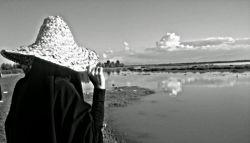 همیشه رویا بودی برایم... خودِ خودِ یک رویای بهاری... ولی بعدها فهمیدم؛ کابوس ها گاهی چقدر زیبا میشوند...   #فاطمه_بعیدی   عکس هم از خواهری جونم