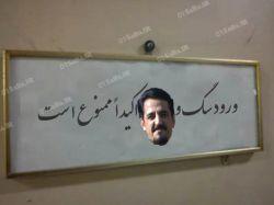 ورود سگ و امیرخان کون قلمبه تو پیج دخترا ممنوع است هه @salam1349