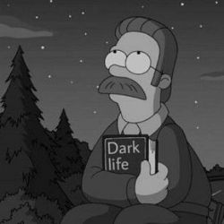 **زندگی تاریک**