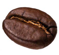فروشگاه آنلاین قهوه تازه کافی استور - فروش پودر و دان قهوه تازه