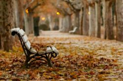 از چند روز دیگه كه لباسای پاییزی رو از چمدون و گوشه و كنار كمدا میكشین بیرون اگه لباسی بود که کلی خاطره رو یادتون می آورد بذارین همونجا بمونه یكی دیگه بخرین پاییز  به اندازهء كافی خاطره داره...!