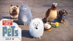 انیمیشن زندگی مخفی حیوانات خانگی