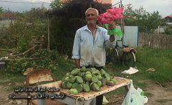 آقای حمدالله رمضانی