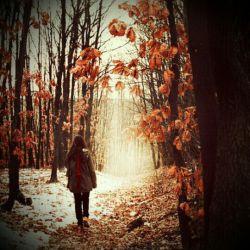تنها کافی ست تو نباشی ؛آنوقت عصر پاییز و غروب جمعه باهم هم دل و هم قسم می شوند تا دمار از روزگارم در آورند.... :( #دلتنگتم