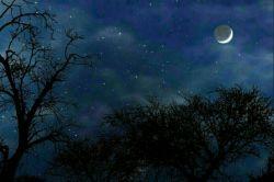 زان شبی که وعده کردی روز بعد روز و شب را می شمارم روز و شب. شبتون زیبا دوستان