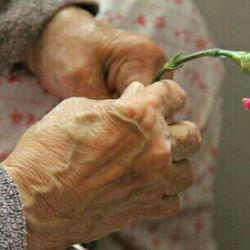 پیر در پنهان هر رخداد ، نکته ها می بیند که دیده دیگران به دیدن آن نابیناست ما با احترام به کهن سالان ، در حقیقت به فردای خود احترام می گذاریم