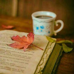 پاییز، فرصت خوبیست  به كسی كه رفته فكر نكنیم:) به خاطراتی كه ریخته اند، به روزهایی كه رفته اند و از نو....  ای لعنت به تو:) ادامه ی این شعر یادم رفت...:)