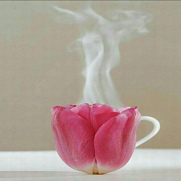 عاشقانه های خاص: هر روز صبح  برایت عشق دم میکنم  در فنجان گل بوسه ای میریزم  به دیدارت می آیم   تا صبح بخیرت ...سلاااام عشقااا صبحتون بخیر^_^  روزم را شیرین کند