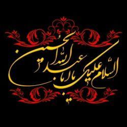 ﷽ السلام علی الحسین و علی علی بن الحسین  و علی اولاد الحسین  و علی اصحاب الحسین..