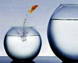 ترس از شکست گاه باعث میشود از تغییرات مثبت در زندگی استقبال نکنیم بخصوص زمانی که به موفقیت خیلی  نزدیک هستیم