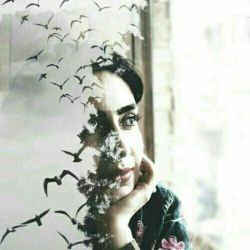 لحظه ها تنها پرندگان مهاجری هستند که هرگز به آشیانه باز نخواهند گشت . . . دریابیم لحظه لحظه زندگی را
