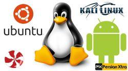 معرفی سیستم عامل لینوکس لینوکس تنها سیستم عاملیه که میشه برای هر هدفی ازش استفاده کرد .  http://persianxtra.ir/?p=1062