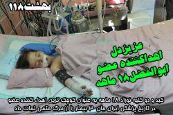 ابوالفضل 18 ماه بیشتر نداشت که بر اثر گازگرفتگی در آغوش مادرش در این حادثه دردناک آرام گرفت. مادر قبل از او درگذشت تا داغدار فرزندش نباشد. حالا شاید کودک همچنان به مادرش لبخند میزند و.....
