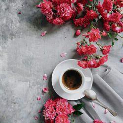 آدم عادت می كند كه تنهایی هم قهوه بنوشد یا چای...  و اینكه صبح در خیابان قدم بزند و فكر كند  كه آسمان امروز  چقدر آبی است آدم به همه چیز عادت می كند...
